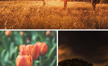 网页多张图片不规则排版布局方式放大左右切换效果