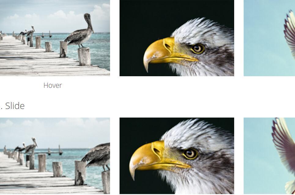 鼠标悬浮于图片时图片展示不同动画效果的css3样式代码
