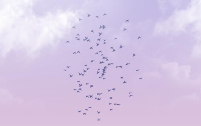 canvas画布绘制空中群鹰展翅翱翔特效js代码