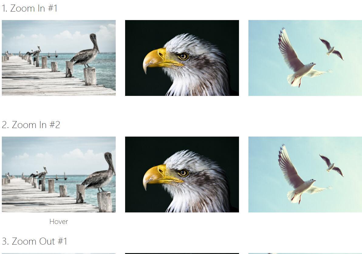 css3图片鼠标hover悬停动画特效网页样式代码