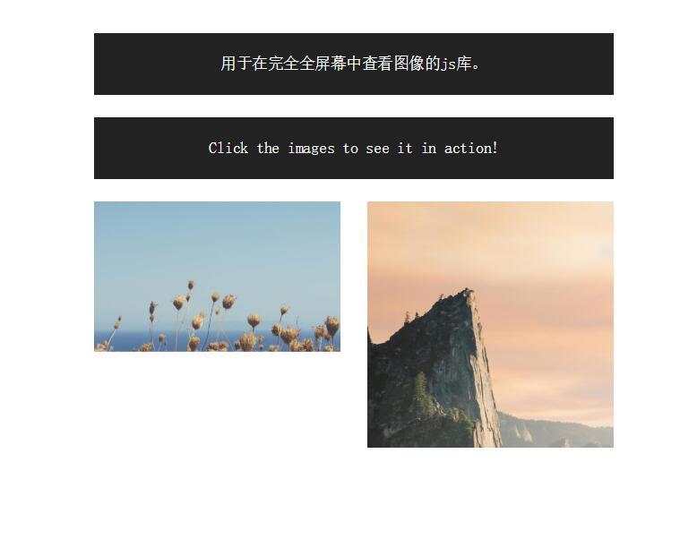网页图片全屏放大图像查看器css3站长素材网页样式代码
