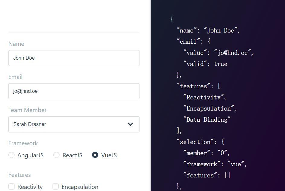 vue.js form表单数据绑定验证表达式