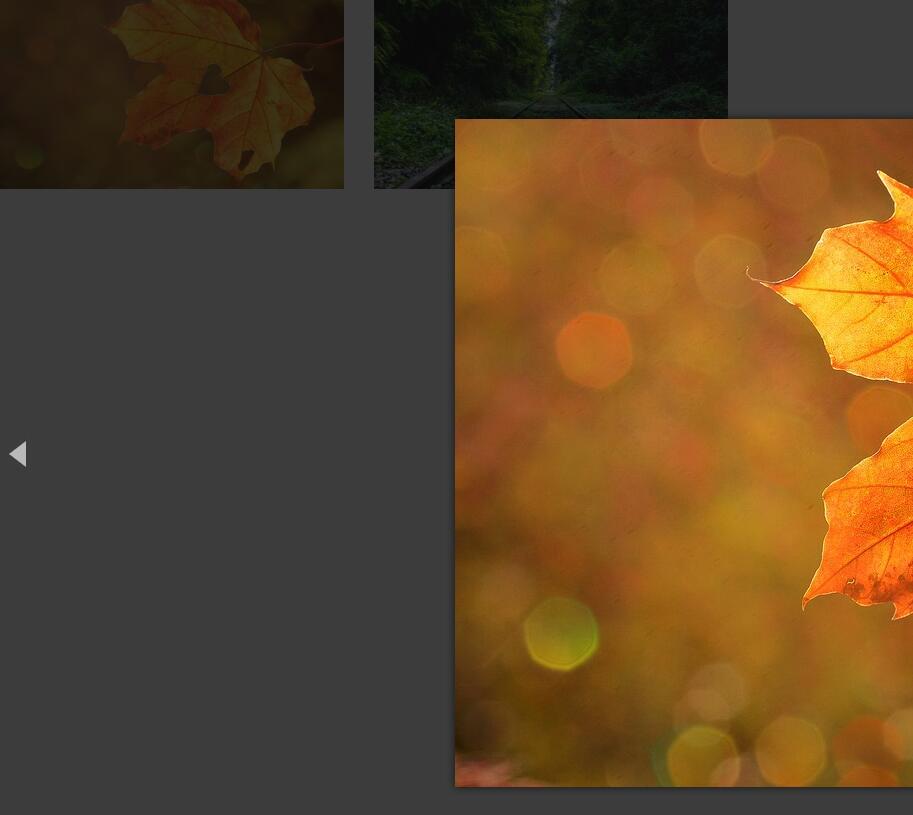 网页图片点击放大预览显示幻灯片插件代码